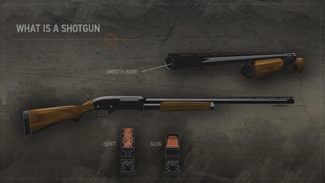 Illustration of a shotgun.