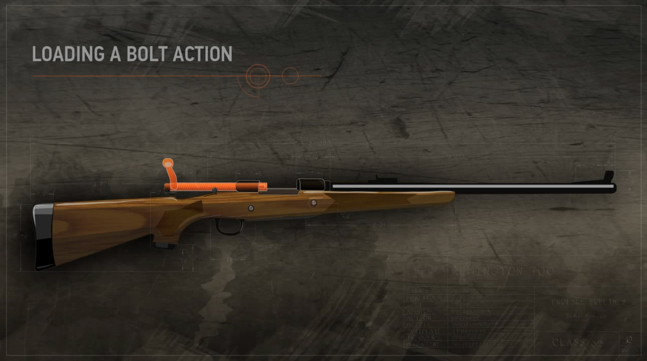 Illustration of a bolt action rifle with the action open and highlighted in orange.