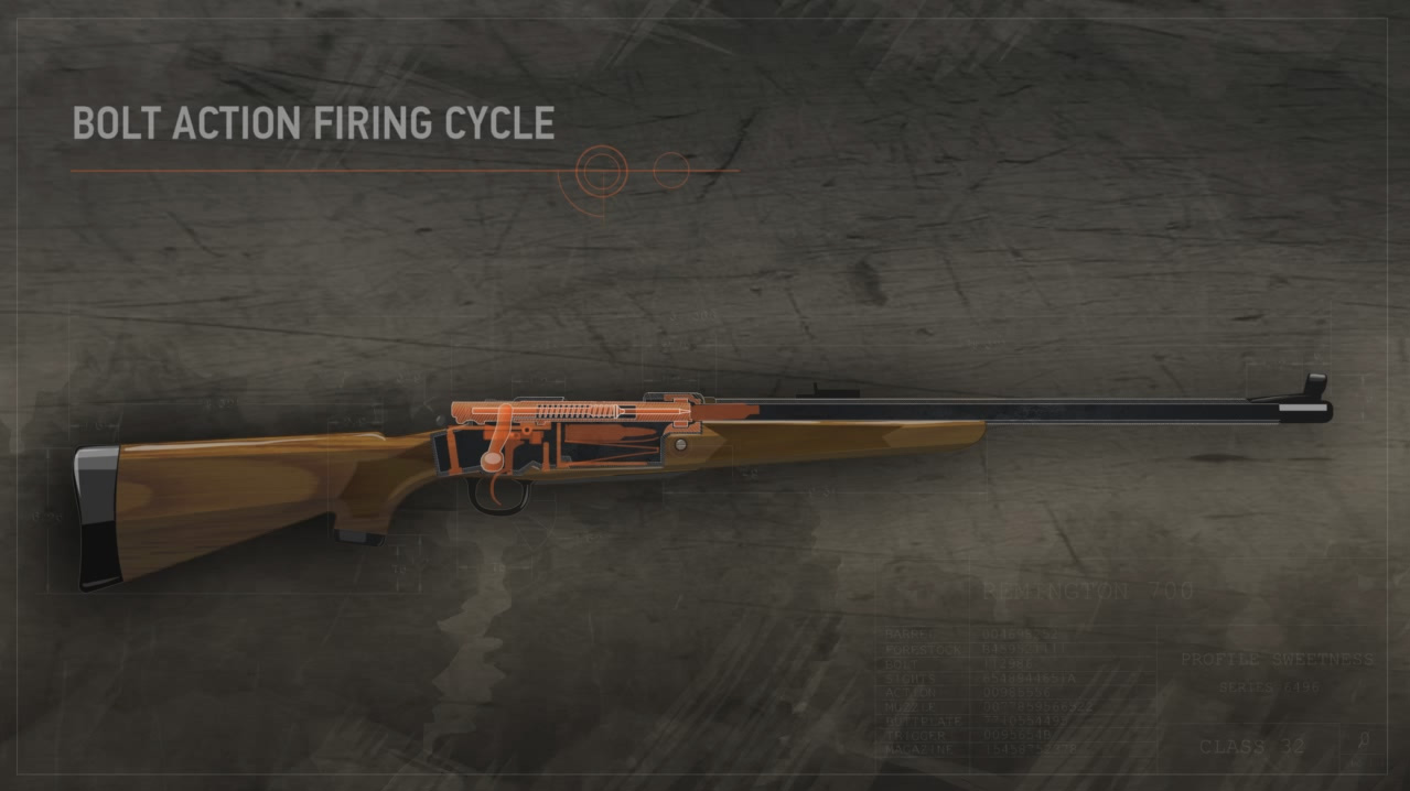 Illustration shows the inside of a loaded bolt action rifle's closed action.