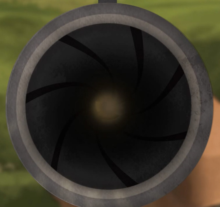 Illustration of the view down a rifle's muzzle showing its rifling.