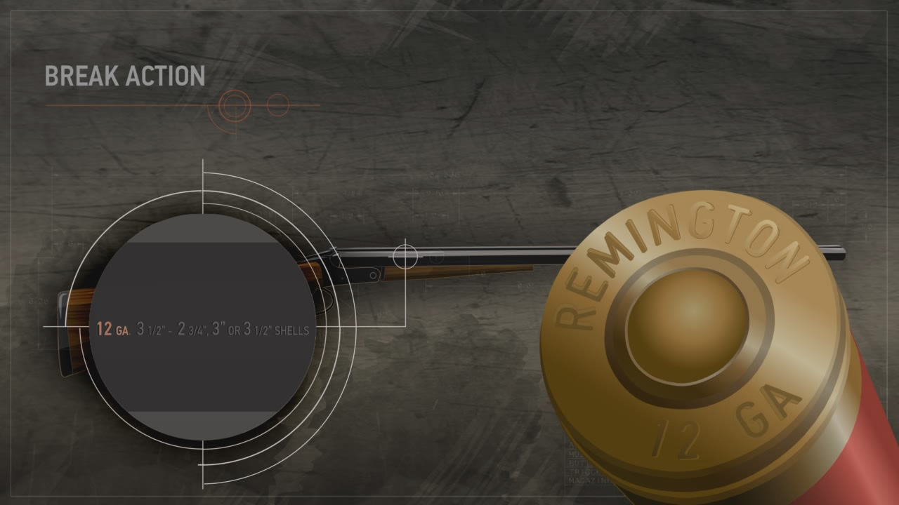 Illustration of a break action shotgun with a close up on the data stamp and the head stamp of a shotshell.