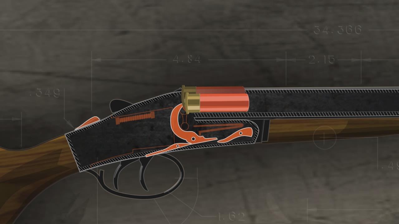 Illustration of the inside of a loaded double barrel break action shotgun.