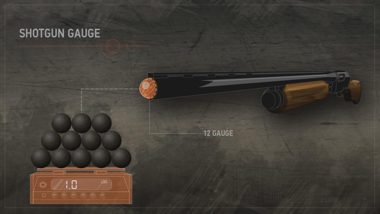 Illustration showing how shotgun gauge is measured.