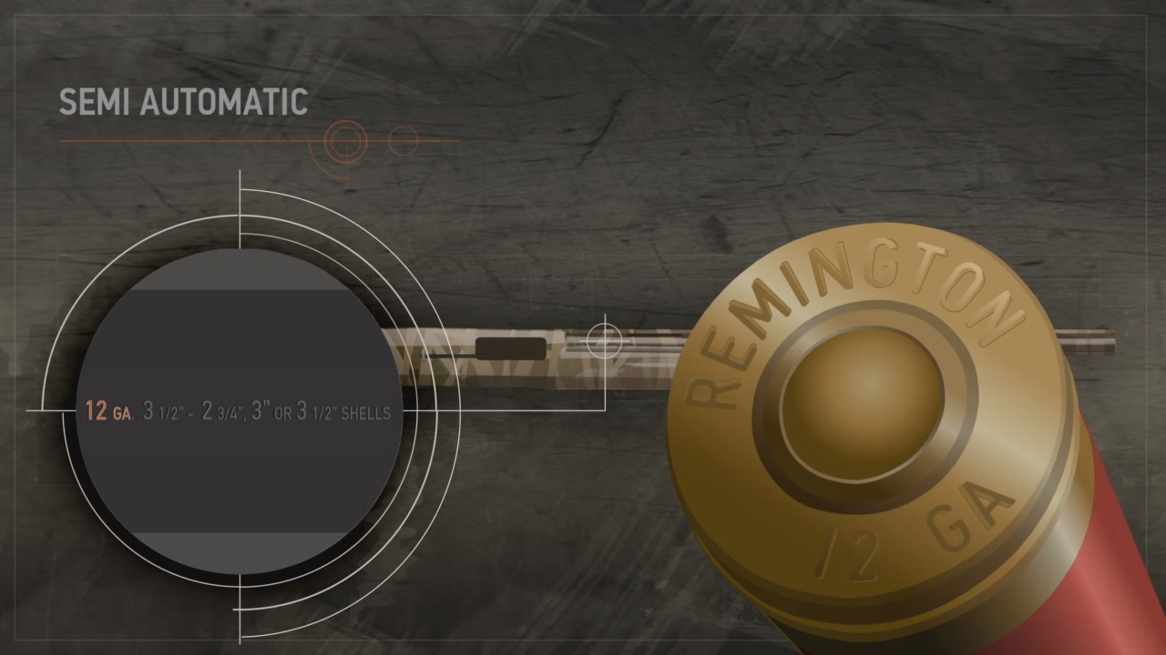 Illustration of a semi-automatic action shotgun with a close up on its data stamp and shotshell's head stamp.